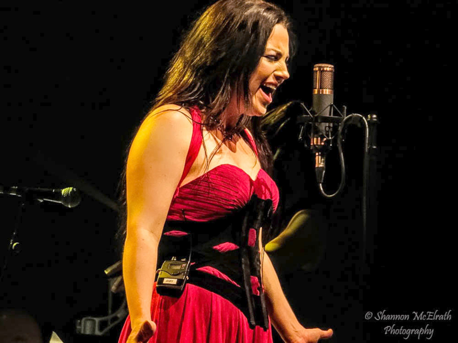 Picture of Amy Lee of Evanescence